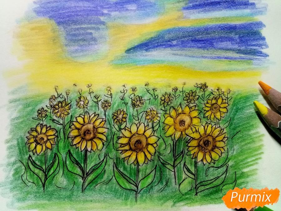 Рисуем поле подсолнухов - фото 9