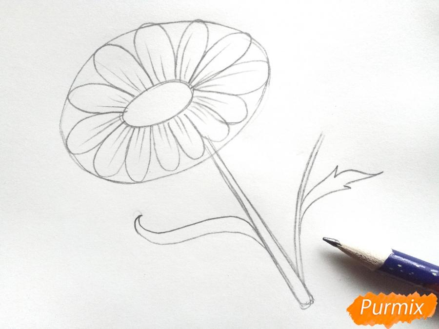 Ромашка для детей - фото 4