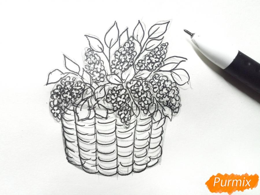 Рисуем сирень в корзине цветными карандашами - шаг 5
