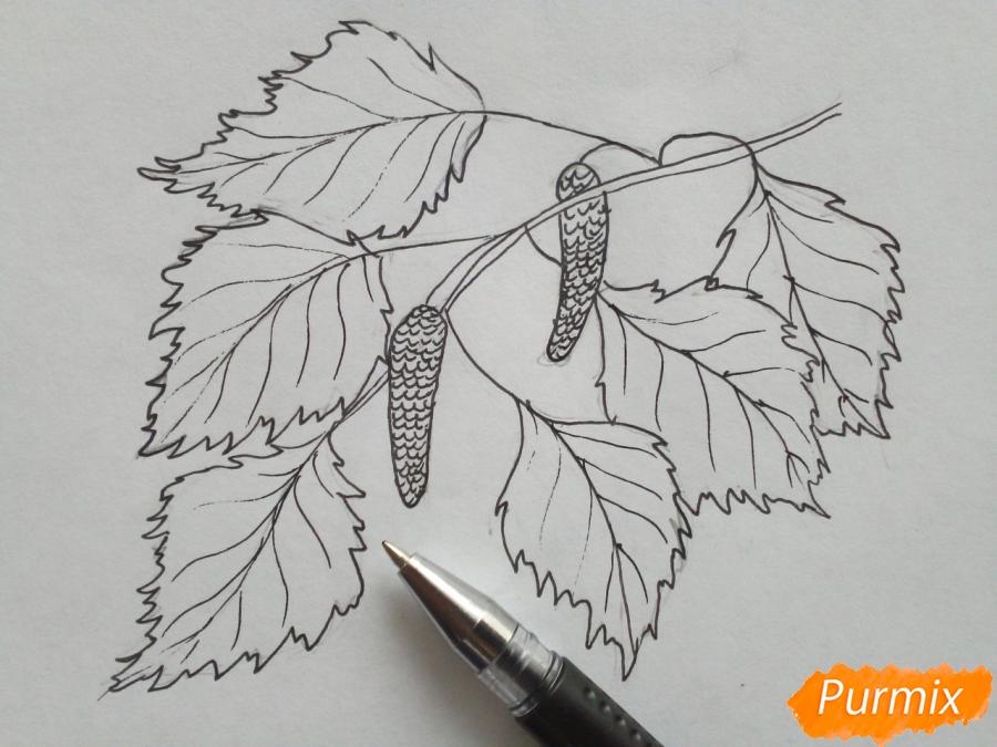 Рисуем ветку березы с листьями - фото 4