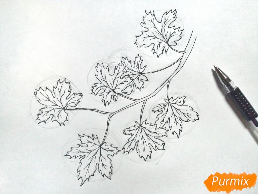 Рисуем ветку с кленовыми листьями - фото 4