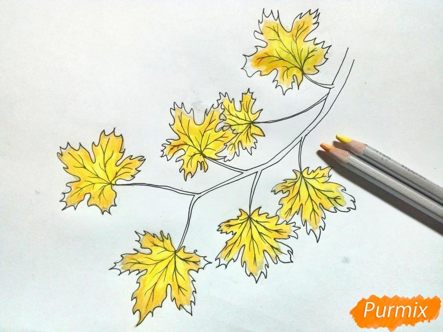 Рисуем ветку с кленовыми листьями - фото 5