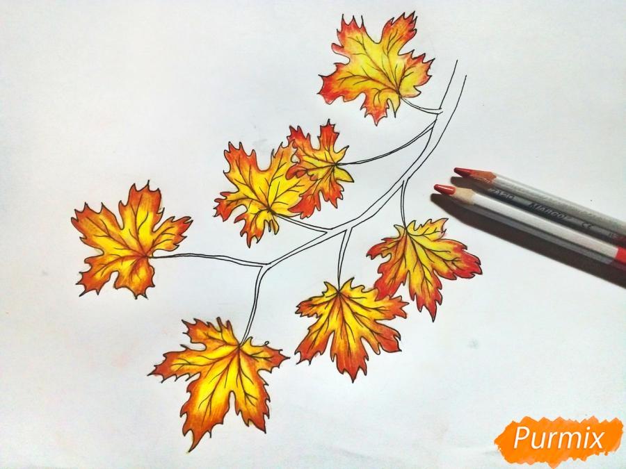 Рисуем ветку с кленовыми листьями - фото 6