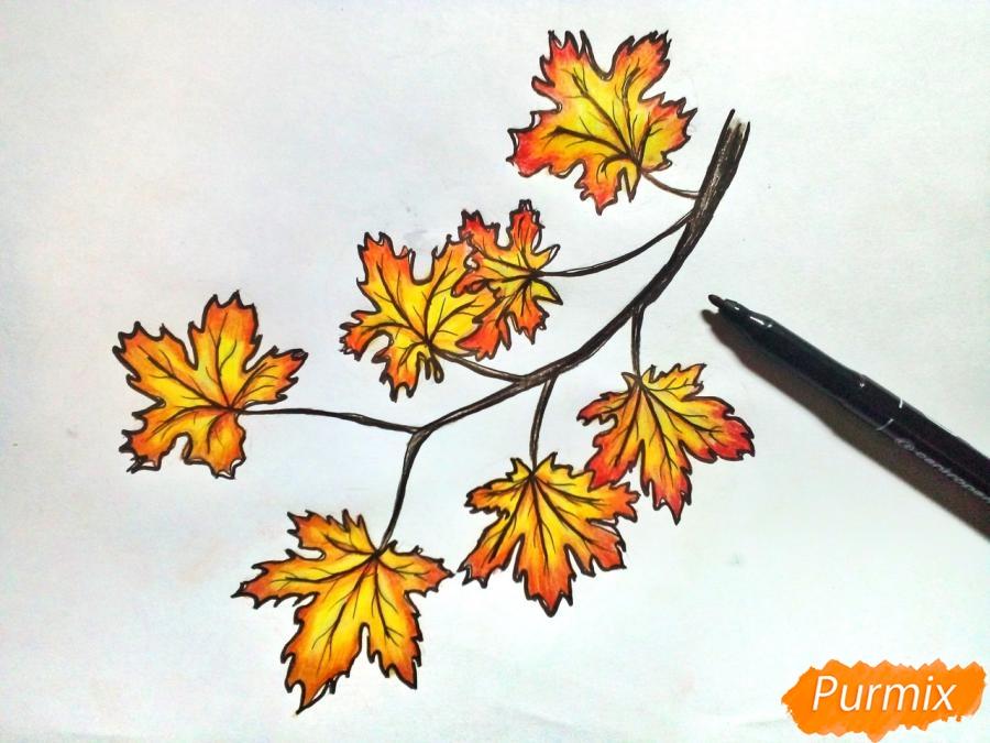 Рисуем ветку с кленовыми листьями - фото 7