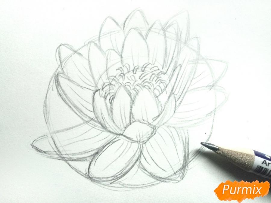 Рисуем водяную лилию карандашами - шаг 5