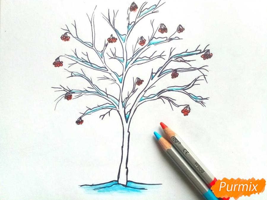 Рисуем зимнее дерево рябины - фото 5