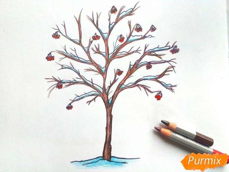 Рисуем зимнее дерево рябины - фото 6