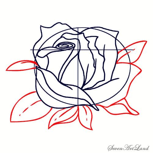 Рисуем белую розу - фото 5