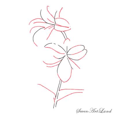 Рисуем лилию или черной ручкой - шаг 2
