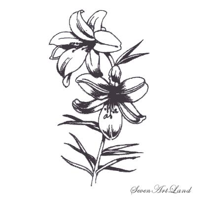 Рисуем лилию  или черной ручкой - шаг 7