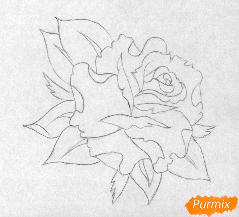 Как нарисовать бутон розы карандашом поэтапно - шаг 1