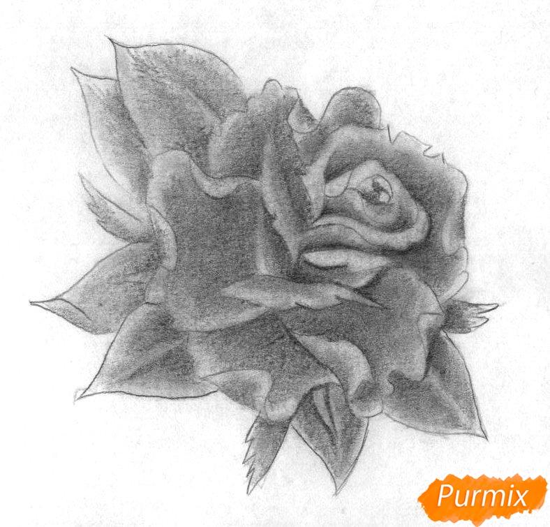 Как нарисовать бутон розы карандашом поэтапно - шаг 3