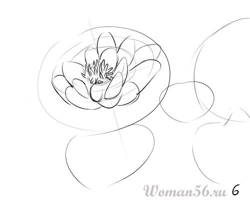 Рисуем цветок лотос - шаг 6