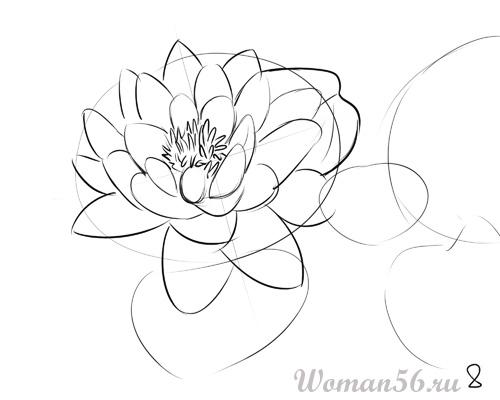 Рисуем цветок лотос - шаг 8