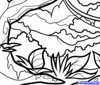 Как нарисовать Джунгли карандашом поэтапно