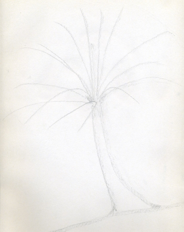 Рисуем кокосовую пальму - фото 2