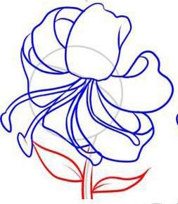 Рисуем лилию  или черной ручкой - шаг 5