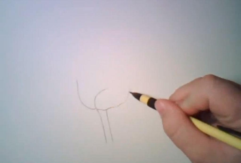 Рисуем реалистичную розу - фото 1