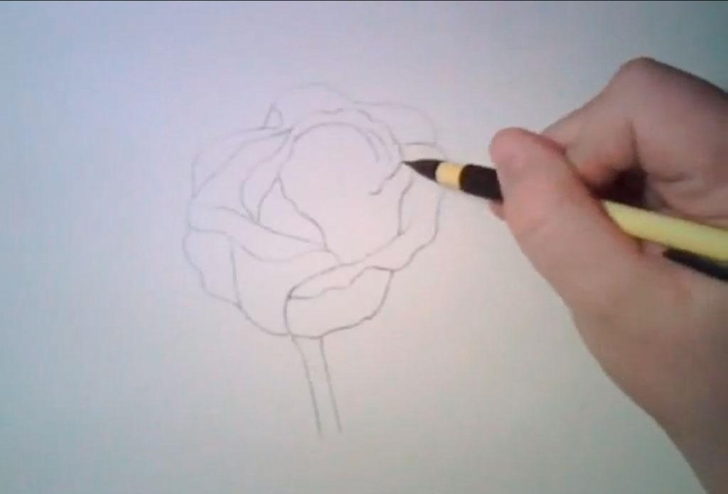 Рисуем реалистичную розу - фото 3