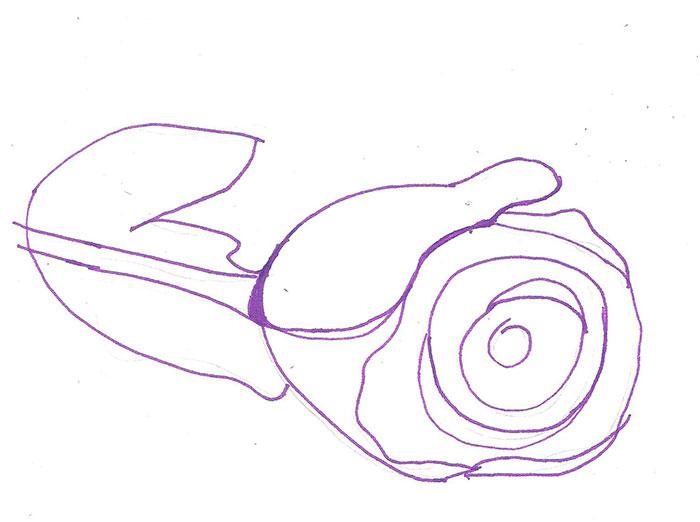 Рисуем лежащую розу ручкой - фото 2