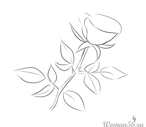 Рисуем розу   для начинающих - шаг 4