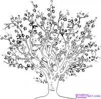 Как нарисовать вишневое дерево поэтапно