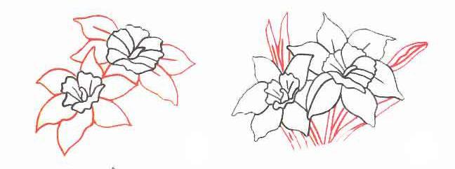Как рисовать Нарциссы - шаг 2