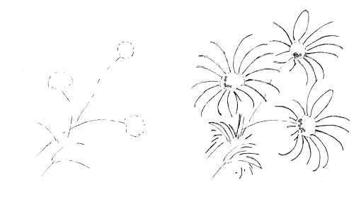 Как просто нарисовать маргаритки