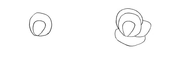 Рисуем розу для детей - фото 1