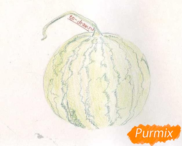 Рисуем целый арбуз цветными карандашами - фото 4
