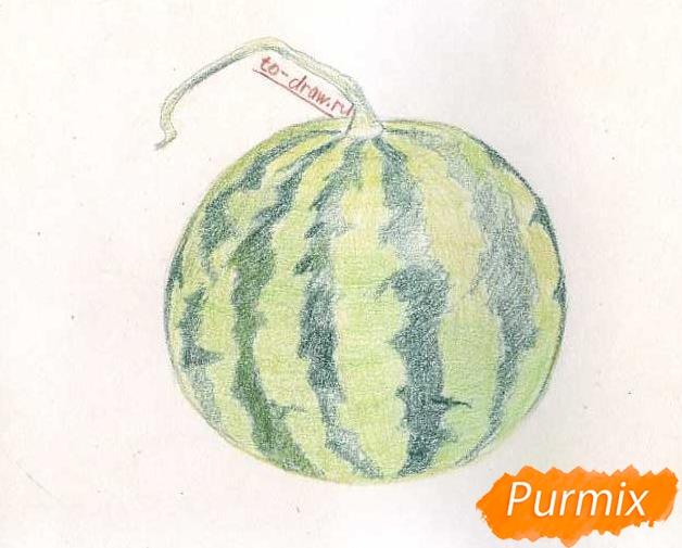Рисуем целый арбуз цветными карандашами - фото 6