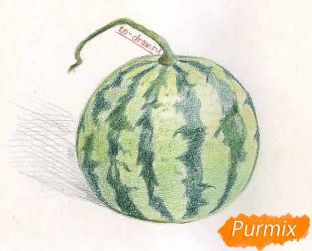 Рисуем целый арбуз цветными карандашами - фото 8