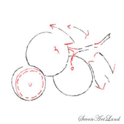 Как нарисовать апельсины на бумаге карандашом поэтапно