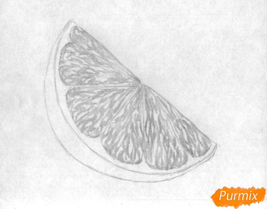 Как нарисовать дольку лайма карандашом поэтапно - шаг 2