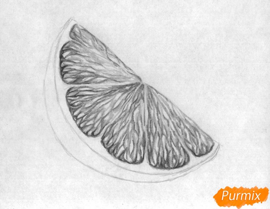 Как нарисовать дольку лайма карандашом поэтапно - шаг 3