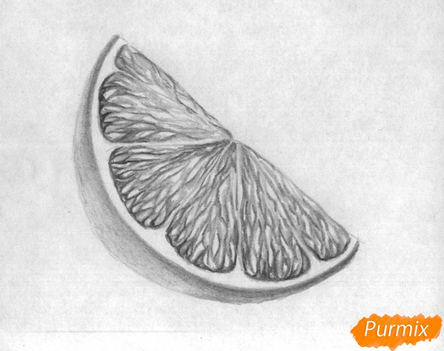 Как нарисовать дольку лайма карандашом поэтапно - шаг 4