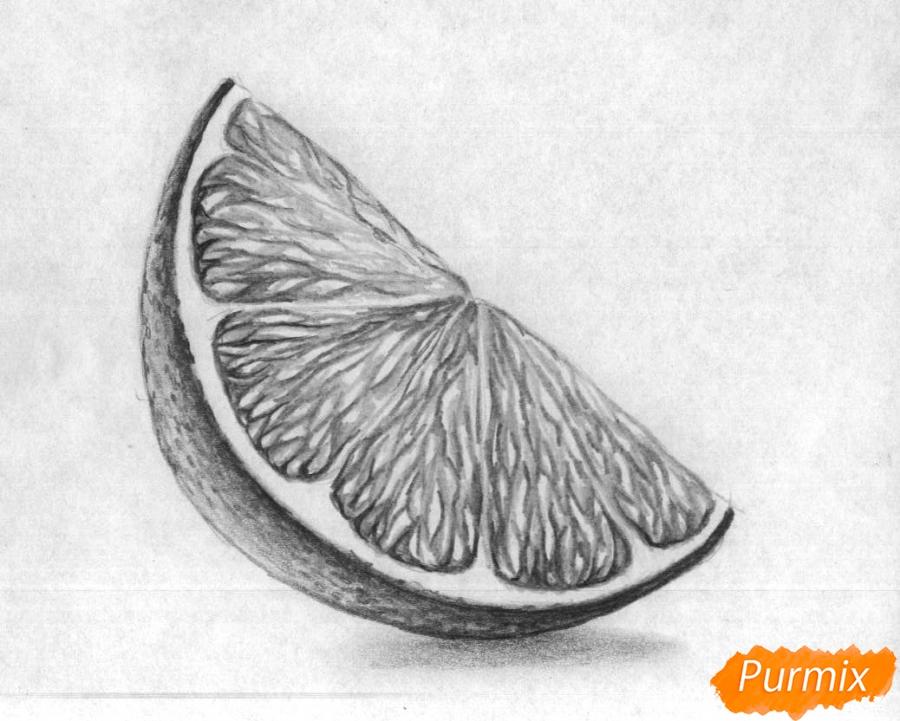 Как нарисовать дольку лайма карандашом поэтапно