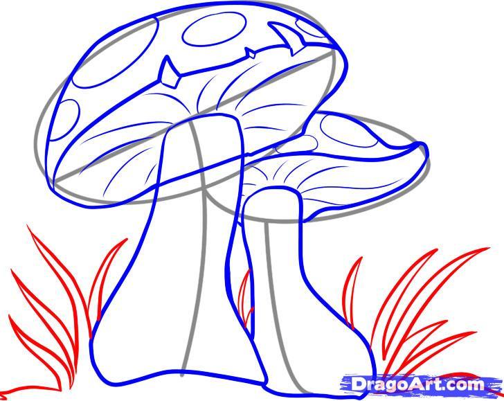 Рисуем грибы