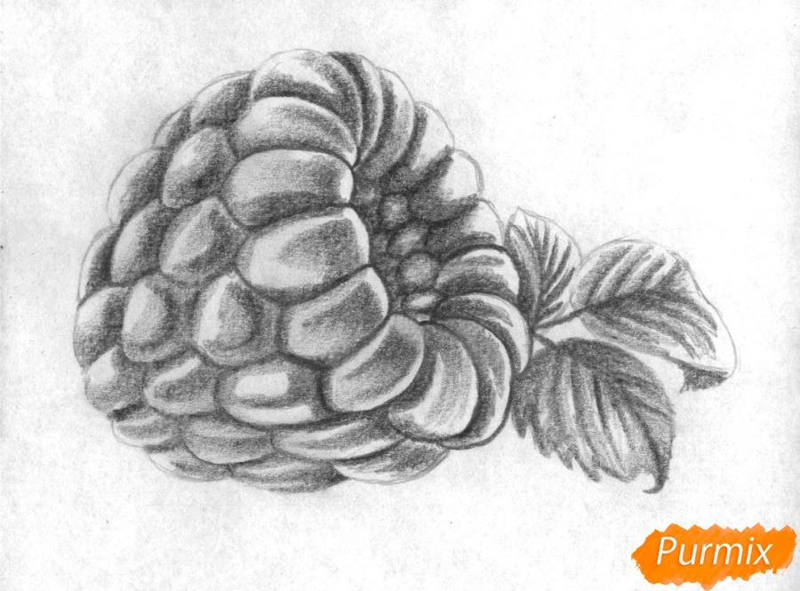Рисуем малину карандашами - шаг 2