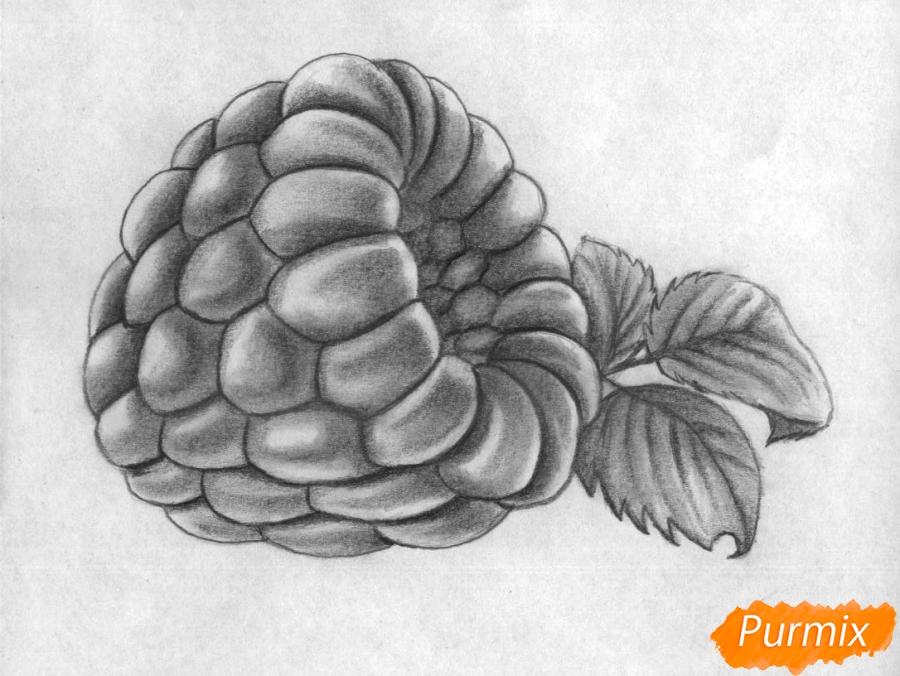 Рисуем малину карандашами - шаг 4