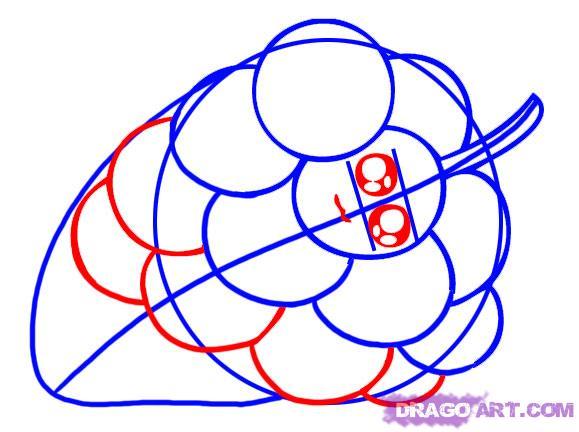 Как нарисовать Виноград карандашом поэтапно