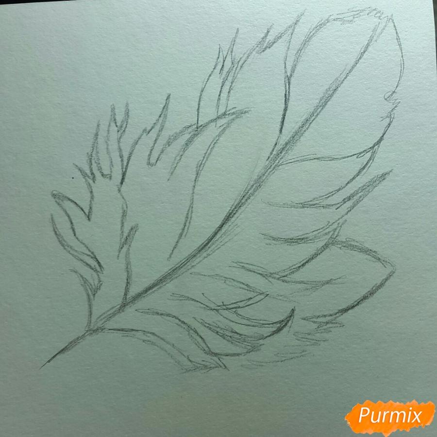 Рисуем перо цветными карандашами - шаг 1