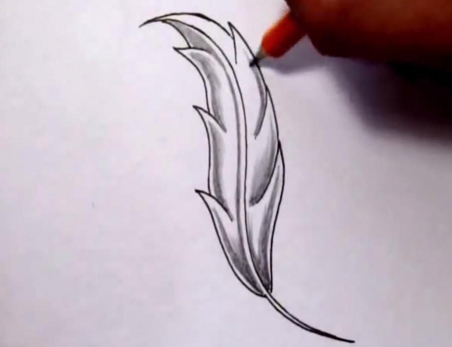 Как красиво нарисовать перо  на бумаге - шаг 4
