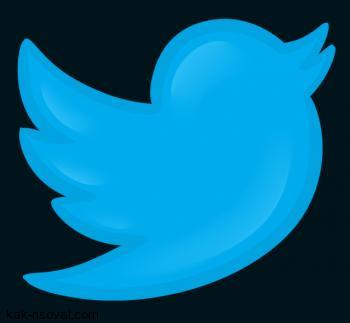 Рисуем логотип Твиттера