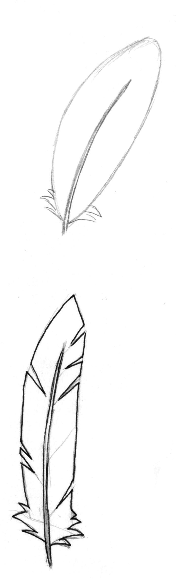 Рисуем перья карандашом - шаг 5