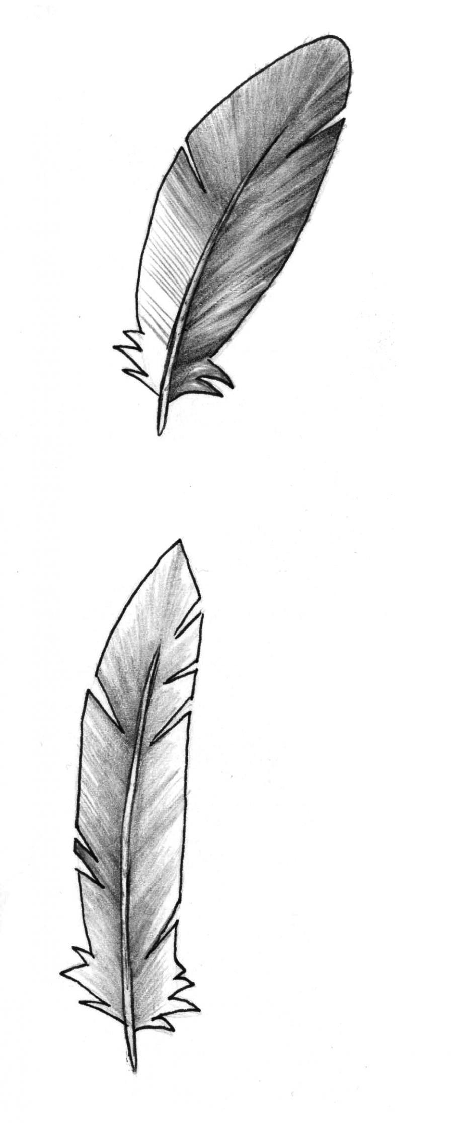 Рисуем перья карандашом