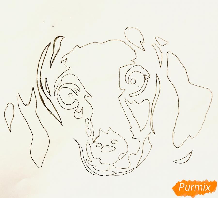 Рисуем таксу в стиле тату - фото 2