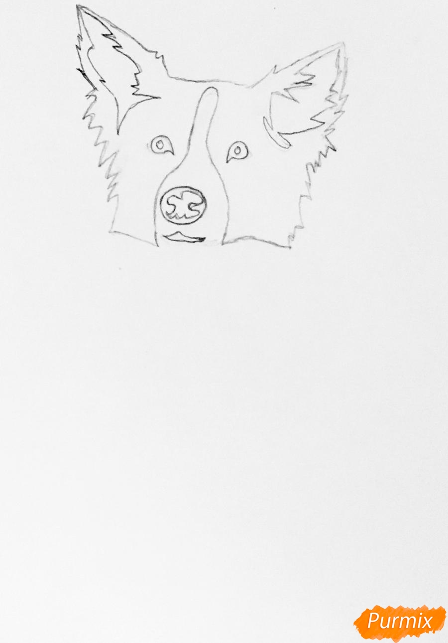 Рисуем тату собаку - фото 2