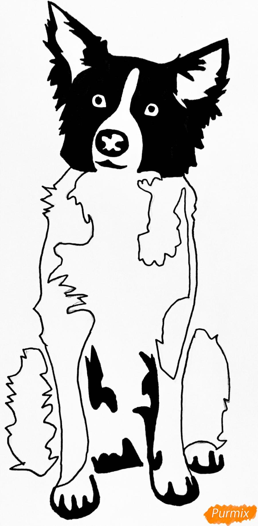 Рисуем тату собаку - фото 9