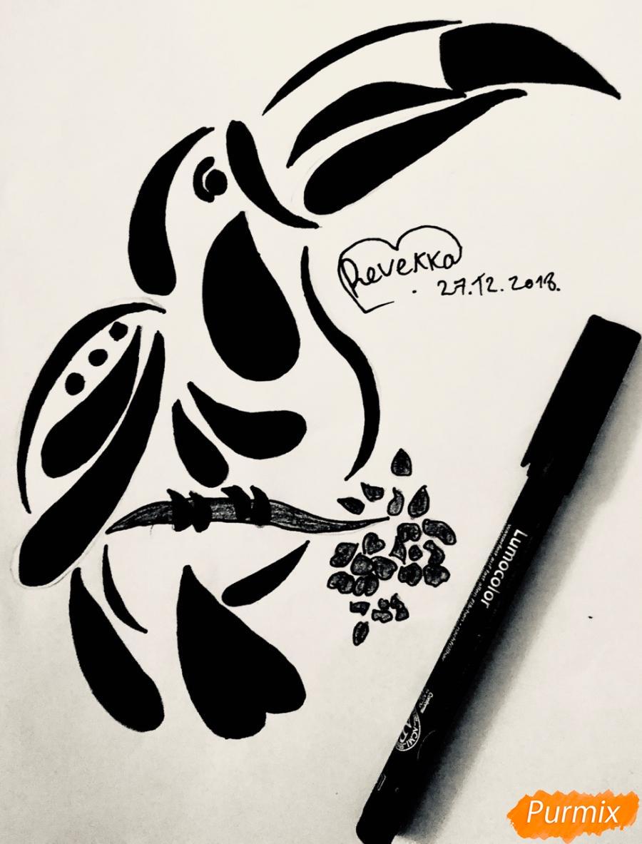 Как нарисовать тукана в стиле тату карандашом поэтапно
